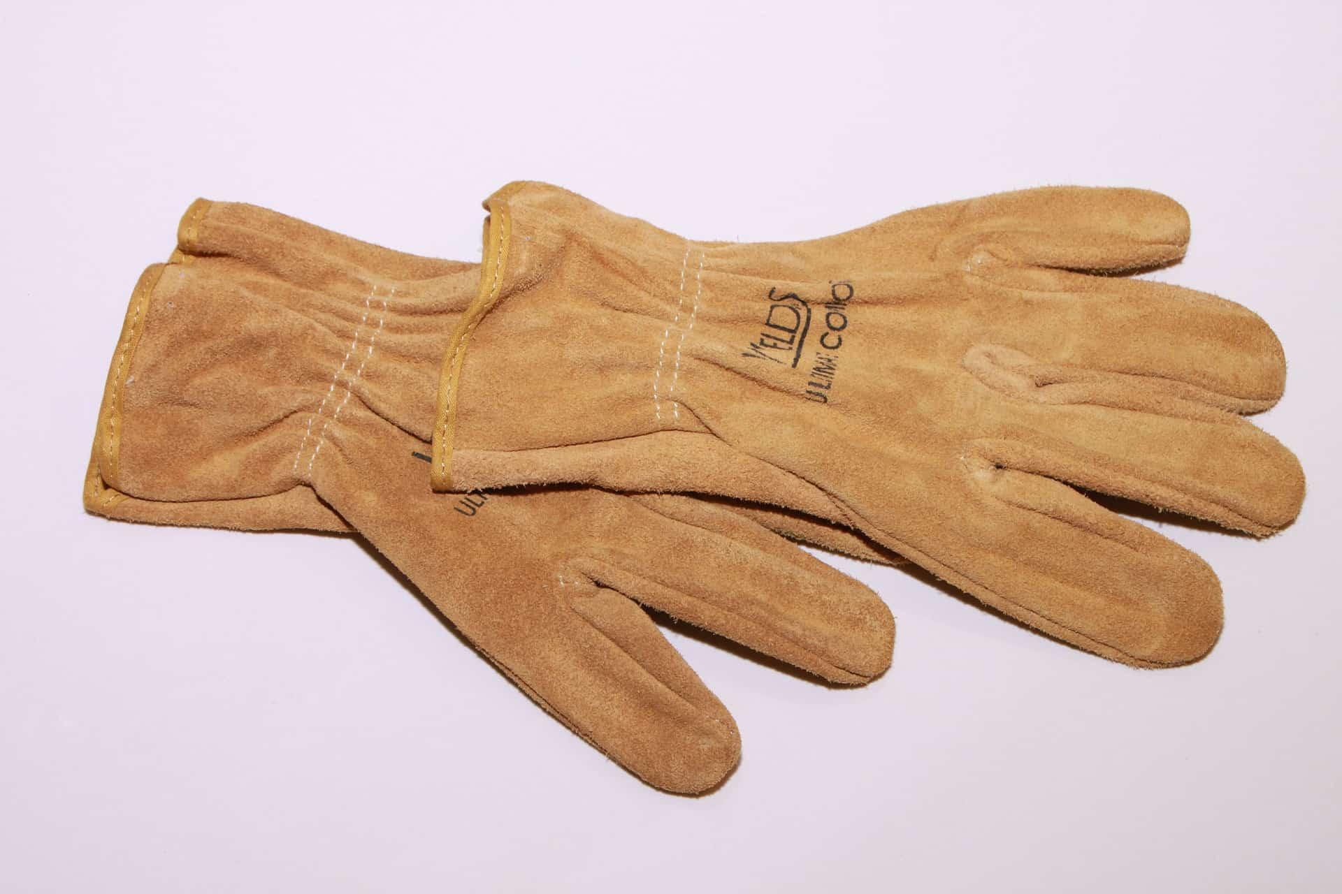Best gloves for rockhounding