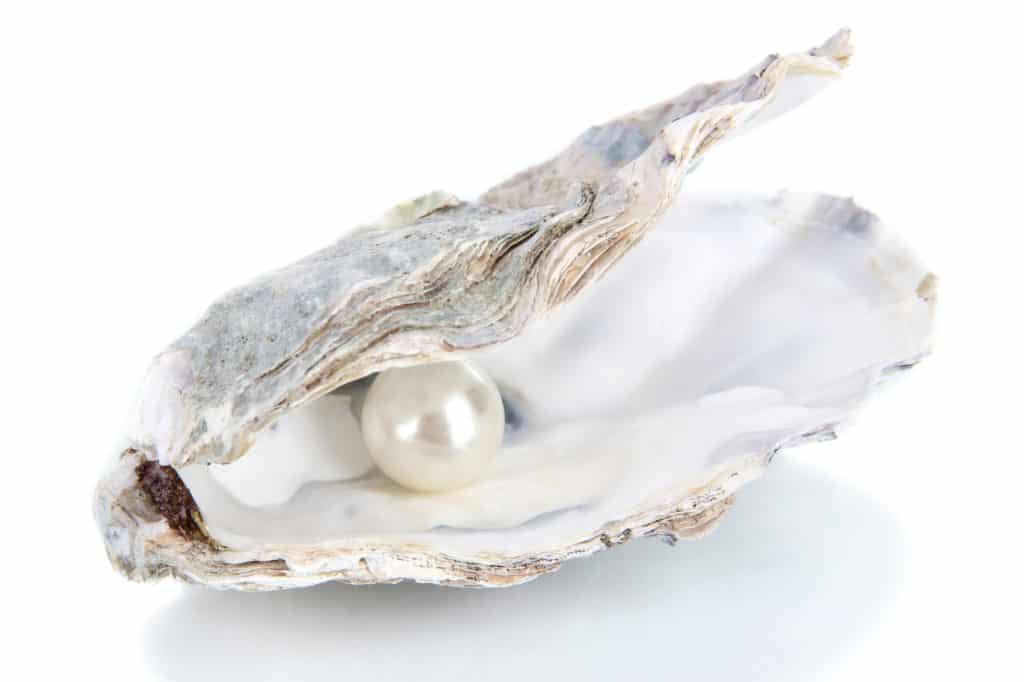 What Are Organic Gemstones? List of Organic Gemstones