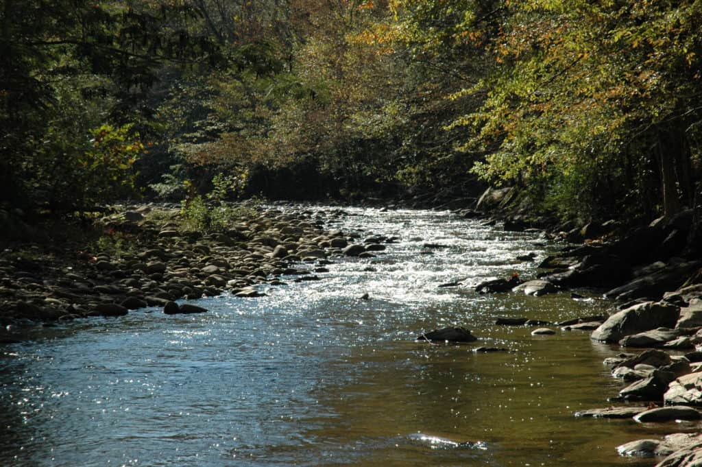 Best Rockhounding Sites in Tennessee & What Rocks and Minerals You Can Find