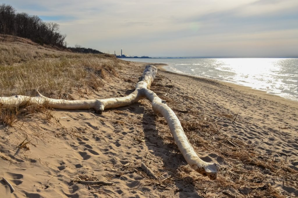 Best Rock Hunting Sites & Beaches in Indiana